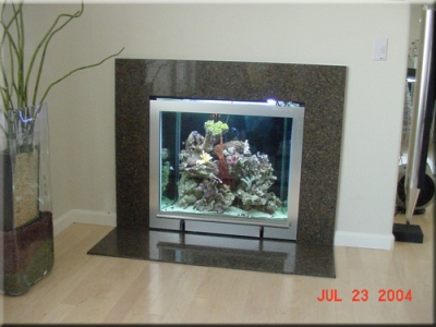 Jason's salt water tank