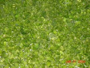 spring green 300