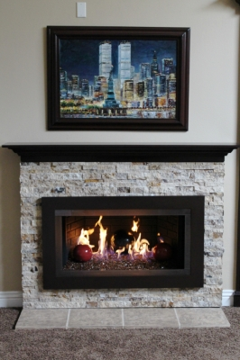 Aluminum or Stainless Steel fireplace surrounds. Stainless ...